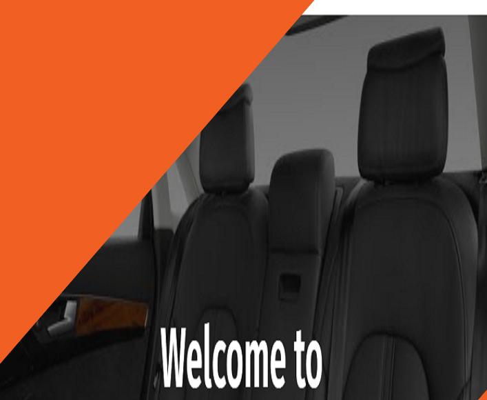 Singh Car Seat Covers